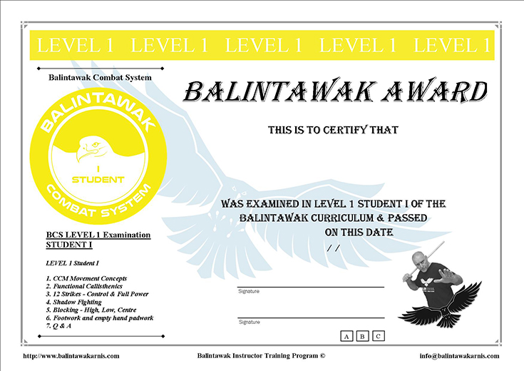 BCS Student Levels - International Balintawak Combat System